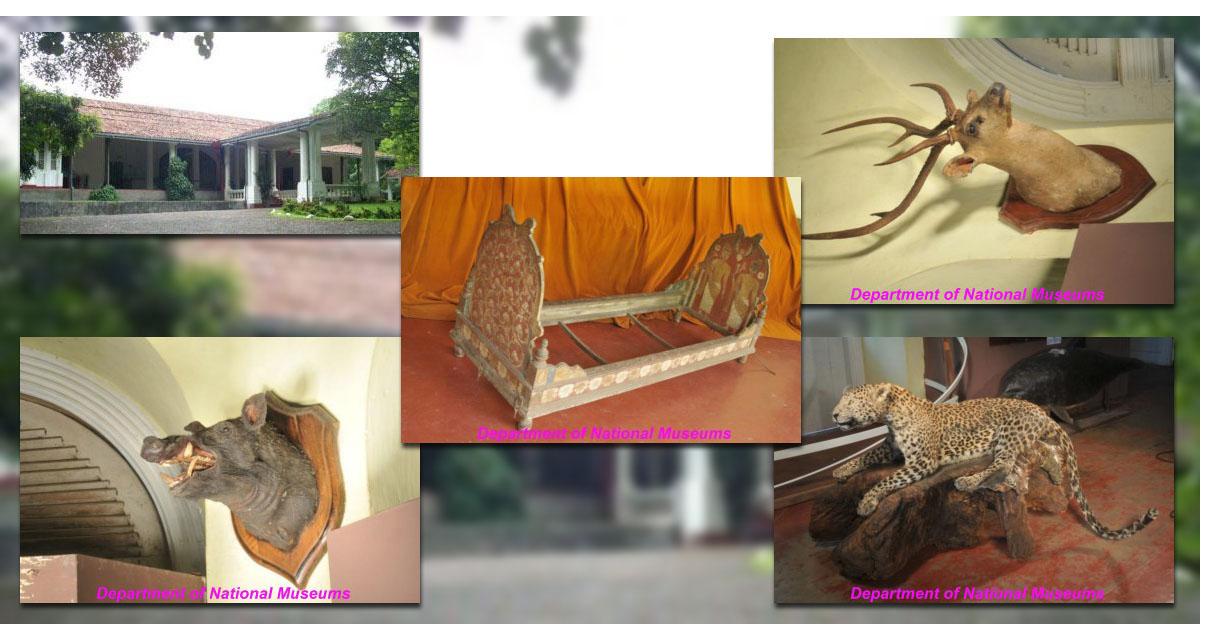 National Museum Ratnapura