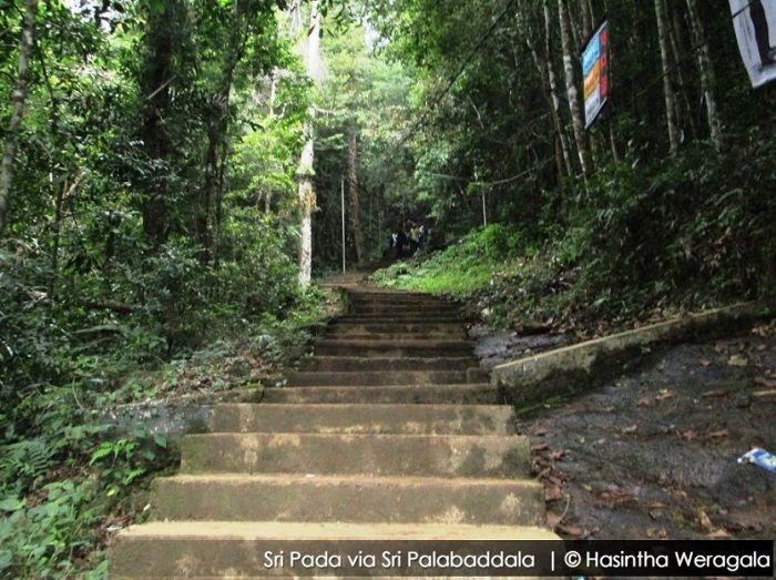 sri palabaddala route to adams peak