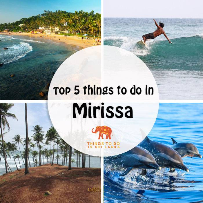 Top 5 things to do in Mirissa, Sri Lanka