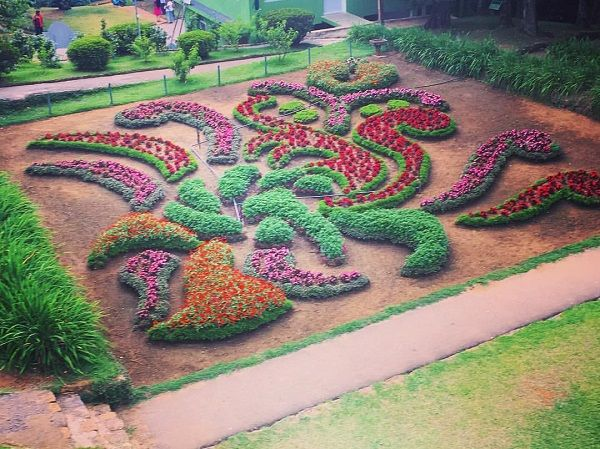 hakgala botanical garden nuwara eliya