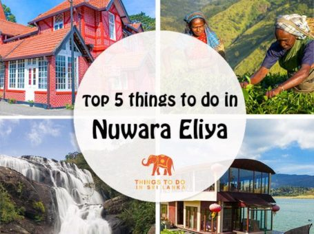 top things to do in nuwara eliya and around