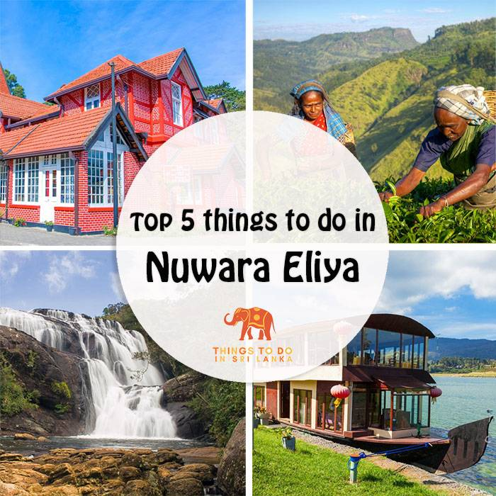 Top 5 things to do in Nuwara Eliya, Sri Lanka