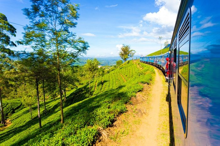 the train ride from kandy to ella