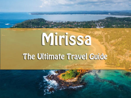 traveler's guide to mirissa beach and whale watching
