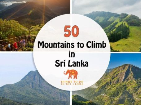 mountains in sri lanka banner.