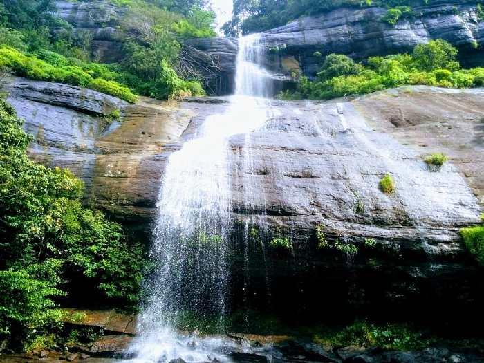දූවිලි ඇල්ල , Doowili ella falls in knuckles forest reserve
