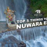 Top 5 things to do in Nuwara Eliya