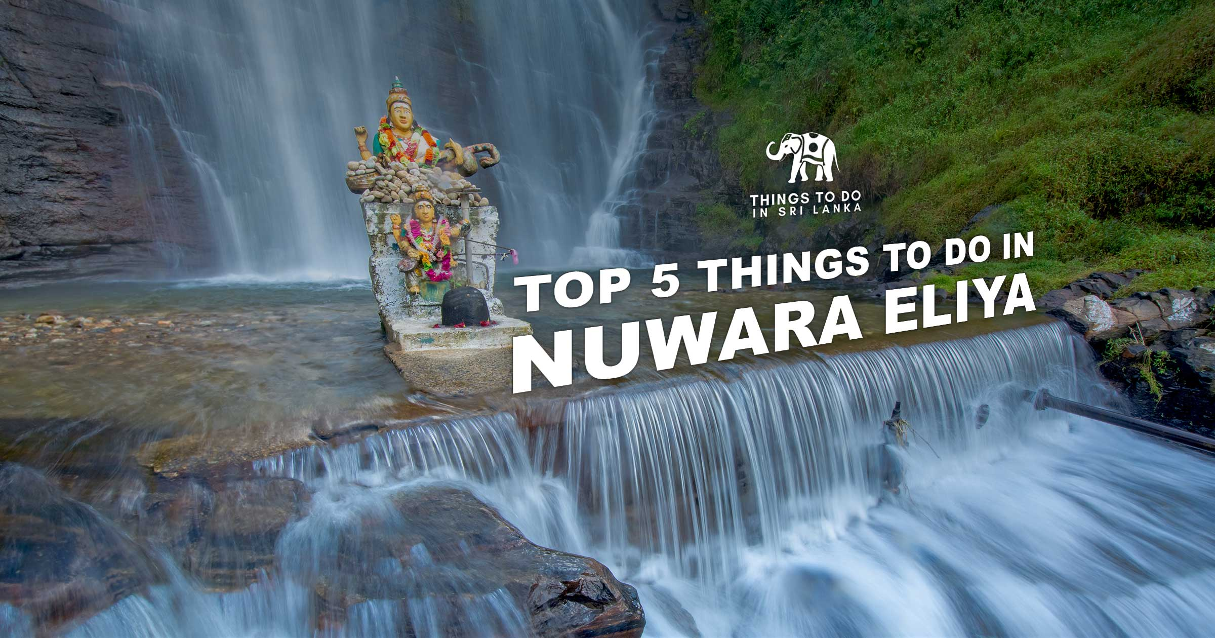 Top 5 things to do in Nuwara Eliya