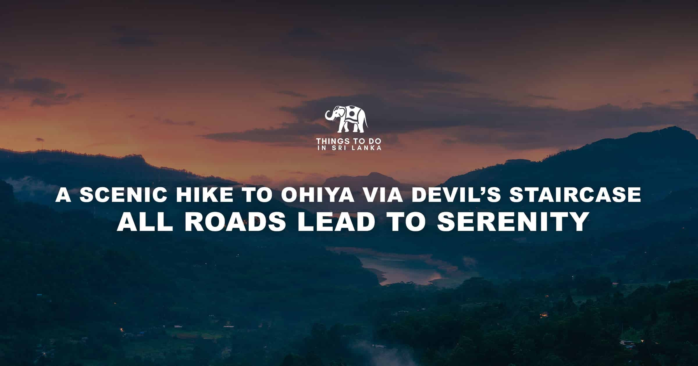 A Scenic Hike to Ohiya via Devil's staircase - All roads lead to serenity