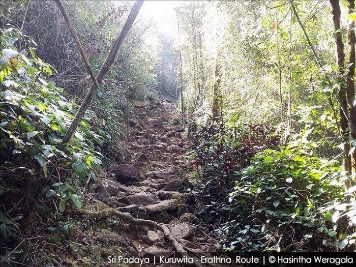 strenous trek to adams peak