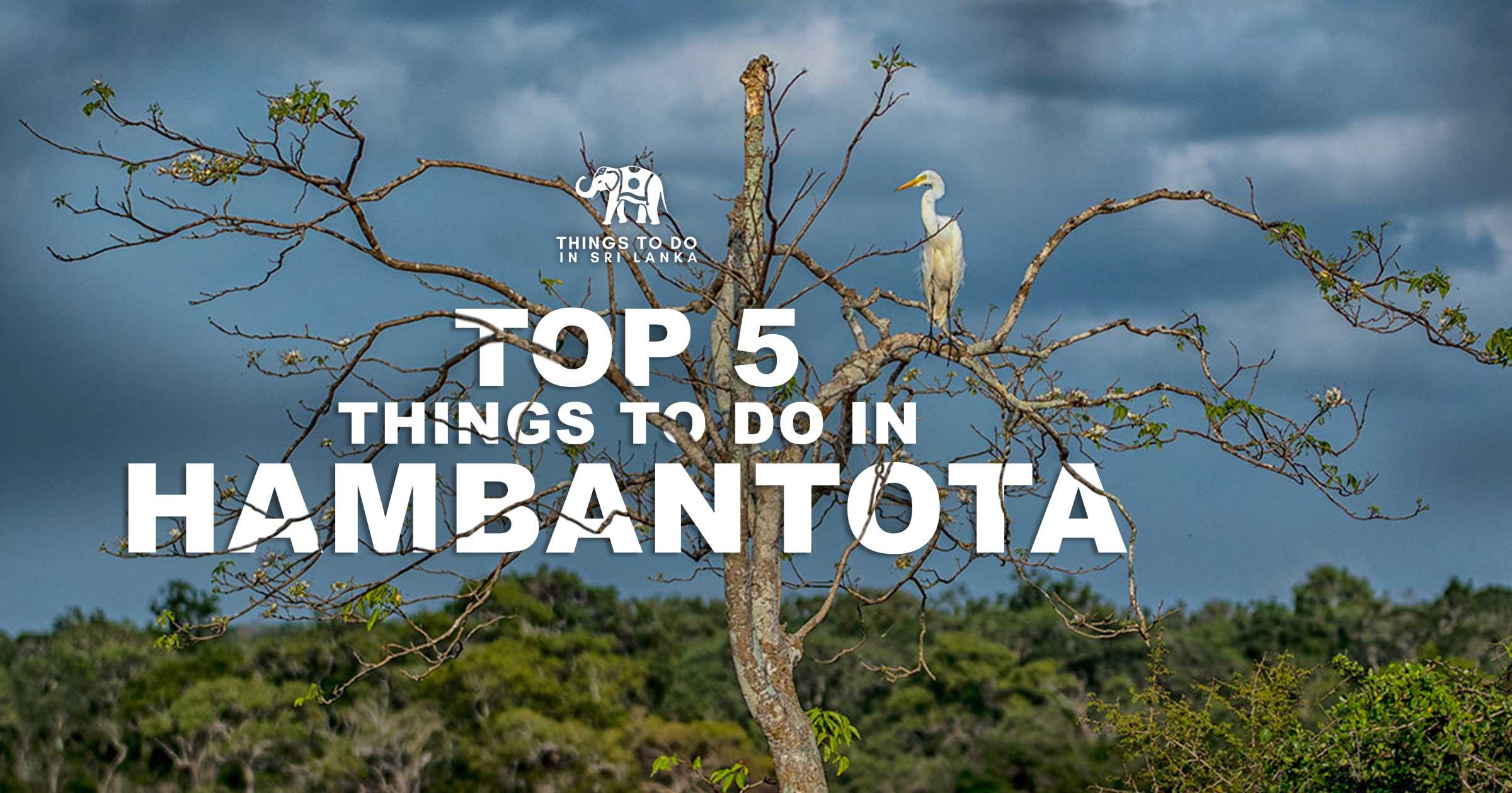 Top 5 things to do in Hambantota
