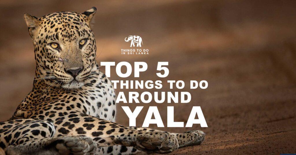 Things to do in Yala Sri Lanka