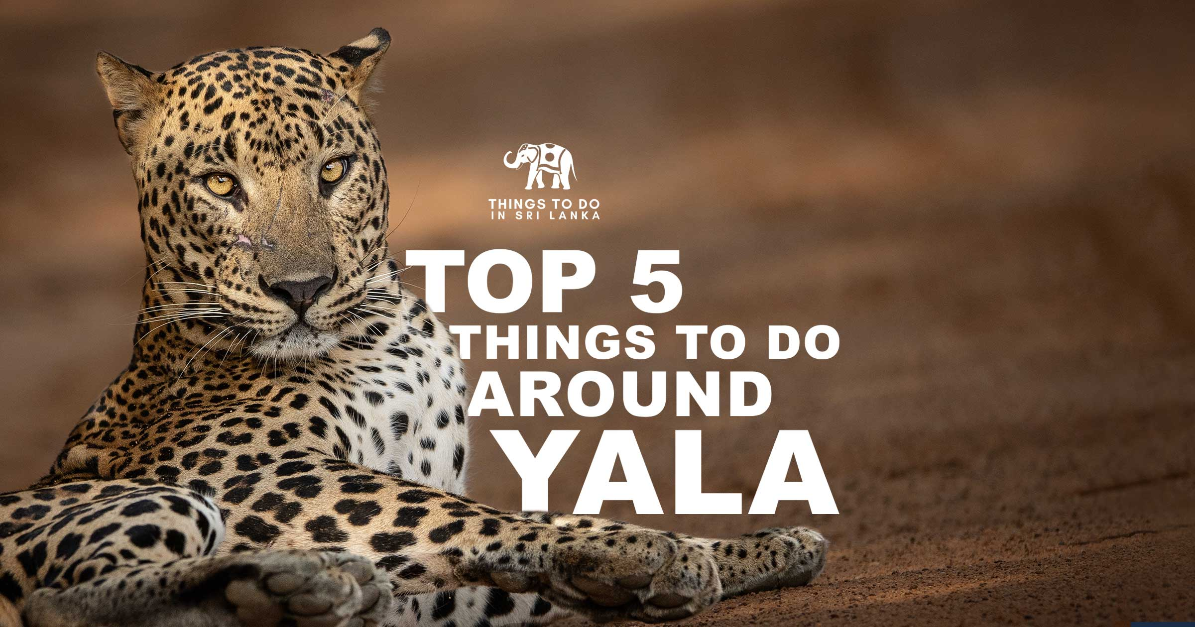 Top 5 things to do Around Yala